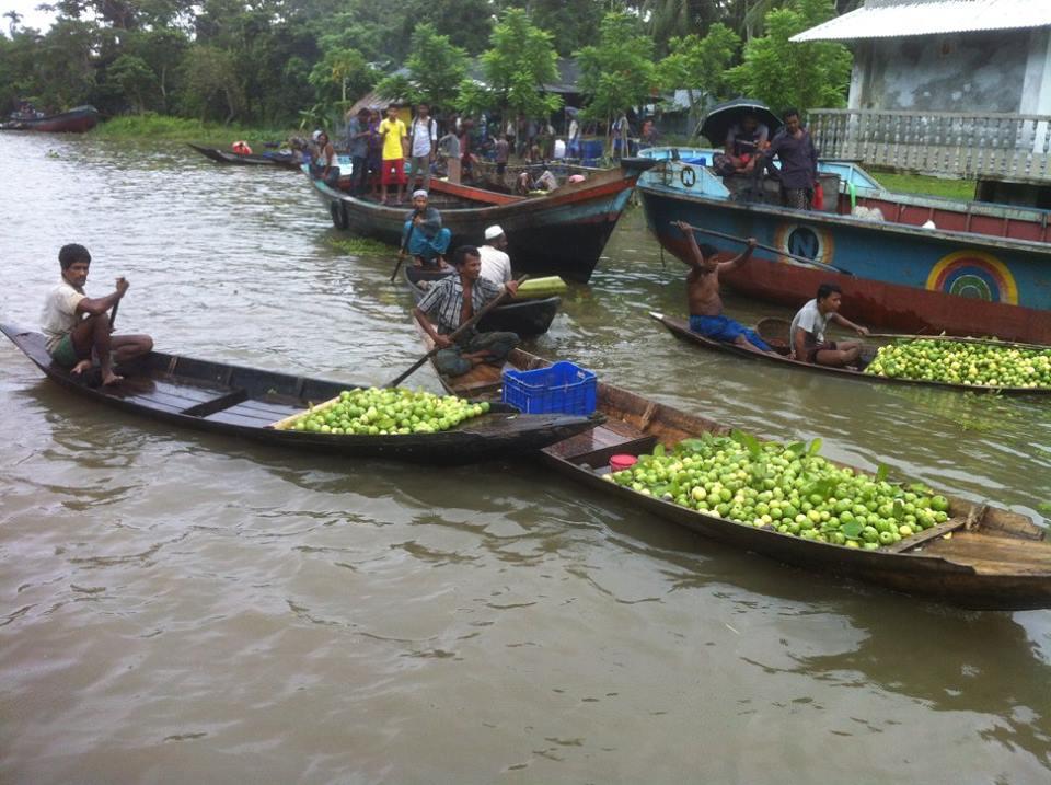 Barisal Backwater Trip